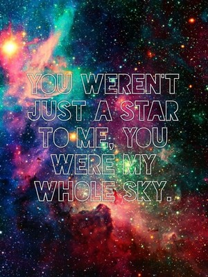 You weren't just a star to me, you were my whole sky.