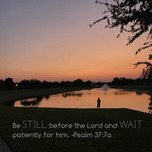 Be still before the Lord and wait patiently for him. -Psalm 37:7a