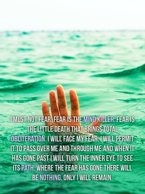 I must not fear. Fear is the mind killer. Fear is the little death that brings total obliteration. I will face my fear. I will permit it to pass over me and through me.And when it has gone past I will turn the inner eye to see its path. Where the fear has gone there will be nothing. Only I will remain.