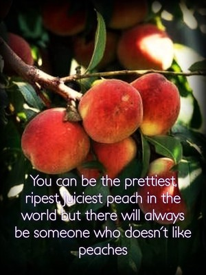 You can be the prettiest, ripest, juiciest peach in the world but there will always be someone who doesn't like peaches