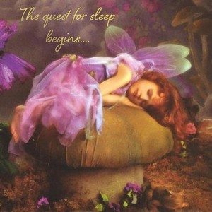 The quest for sleep begins....