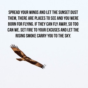 Spread your wings and let the sunset dust them, there are places to see and you were born for flying. If they can fly away, so too can we. Set fire to your excuses and let the rising smoke carry you to the sky.