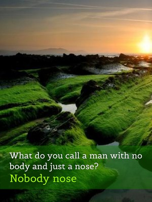 What do you call a man with no body and just a nose? Nobody nose