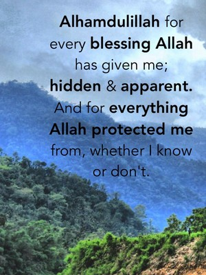 Alhamdulillah for every blessing Allah has given me; hidden & apparent. And for everything Allah protected me from, whether I know or don't.