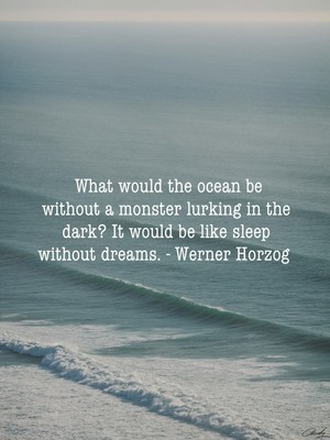 What would the ocean be without a monster lurking in the dark? It would be like sleep without dreams. - Werner Horzog