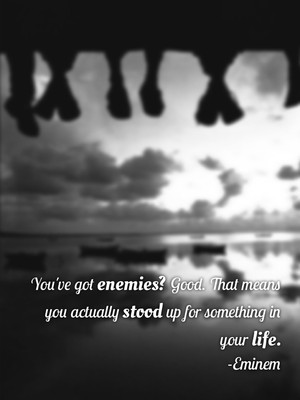 You've got enemies? Good. That means you actually stood up for something in your life. -Eminem