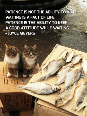 Patience is not the ability to wait. Waiting is a fact of life. Patience is the ability to keep a good attitude while waiting. - Joyce Meyers