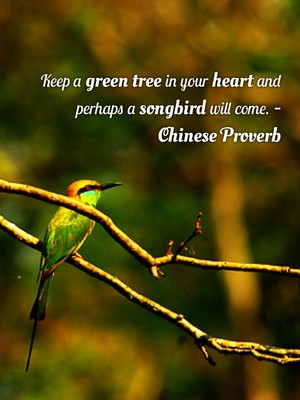 Keep a green tree in your heart and perhaps a songbird will come. -Chinese Proverb