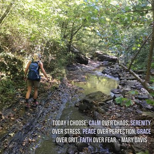 Today I choose: Calm over chaos, serenity over stress, peace over perfection, grace over grit, faith over fear. - Mary Davis