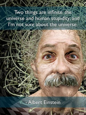 Two things are infinite: the universe and human stupidity; and I'm not sure about the universe. - Albert Einstein