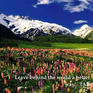 Leave behind the world a better way... TAB