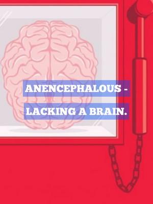 Anencephalous - Lacking a brain.