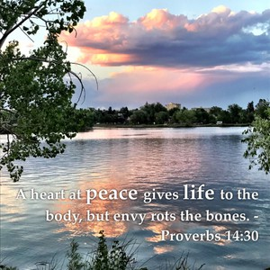 A heart at peace gives life to the body, but envy rots the bones. - Proverbs 14:30