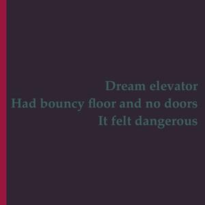 Dream elevator Had bouncy floor and no doors It felt dangerous