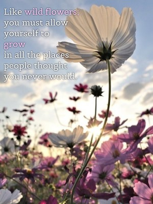 Like wild flowers; you must allow yourself to grow in all the places people thought you never would.