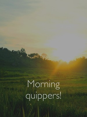Morning quippers!