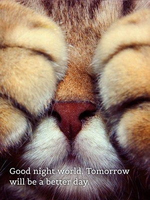 Good night world. Tomorrow will be a better day.