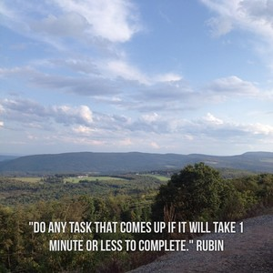 """Do any task that comes up if it will take 1 minute or less to complete."" Rubin"