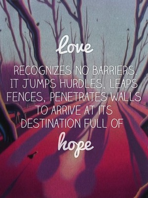 Love recognizes no barriers. It jumps hurdles, leaps fences, penetrates walls to arrive at its destination full of hope