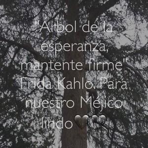 """""""Árbol de la esperanza, mantente firme"""" Frida Kahlo. Para nuestro Méjico lindo🖤🖤"""