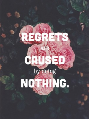 Regrets are caused by doing nothing.