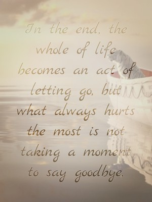 In the end, the whole of life becomes an act of letting go, but what always hurts the most is not taking a moment to say goodbye.