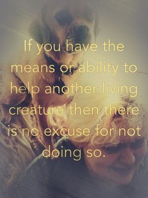 If you have the means or ability to help another living creature then there is no excuse for not doing so.