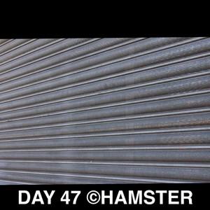 Day 47 ©Hamster yah skein